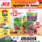 Moscow – ACE February Spotlight on Savings Newsprint Advertisement
