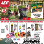 Moscow – ACE February Spotlight On Value! Newsprint Advertisement