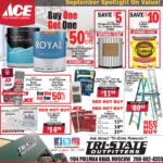 Moscow – ACE September Spotlight On Savings! Newsprint Advertisement